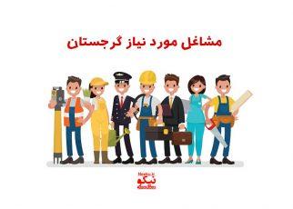 مشاغل مورد نیاز گرجستان